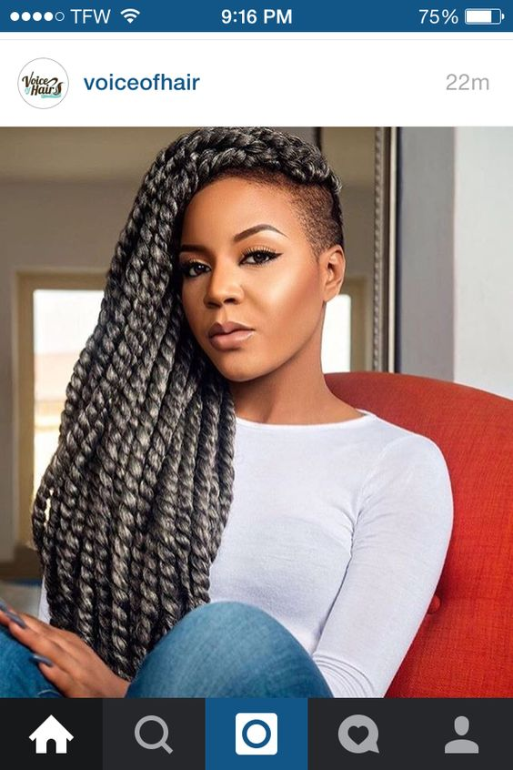 13 Drool Worthy Gray Braids Inspiration Styles Jjbraids